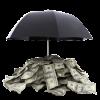 Assurance-vie : ces contrats du Web qui cartonnent